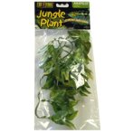 JUNGLE PLANT AMAPALLO (SMALL) PT3001