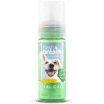 FRESH BREATH MINT FOAM 4.5oz (133ml) FBFOAM