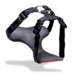 PET VEHICLE SAFETY HARNESS - MED (20-55lbs)  62295