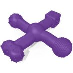 SAFECHEW MULTI CHEW TOY - PURPLE SM145