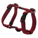UTILITY-SNAKE H-HARNESS - RED (MEDIUM) RG0SJ11C
