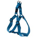 UTILITY-FANBELT STEP IN HARNESS - TURQUOISE (LARGE) RG0SSJ06F