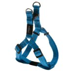UTILITY-NITELIFE STEP IN HARNESS - TURQUOISE (SMALL) RG0SSJ14F