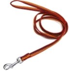 LEASH WITH STRIPE (RED)(10mm*120cm) BW/NYLA10PRD