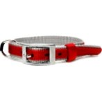 DOG COLLAR (DOUBLE WEBBING)(RED)(15mm*30-45cm) BW/NYCR15PBRD