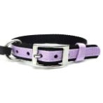 DOG COLLAR (DOUBLE WEBBING)(PURPLE)(15mm*30-45cm) BW/NYCR15PBPU