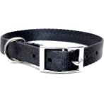 DOG COLLAR (SOLID)(SEA TEAL)(25mm*50*65cm) BW/NYCR25PAST
