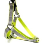 HARNESS (DOUBLE WEBBING)(GREY)(15mm) BW/NYHR15EPBGY