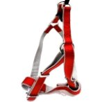 HARNESS (DOUBLE WEBBING)(RED)(25mm) BW/NYHR25EPBRD