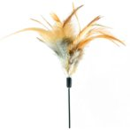CAT TEASER - CHICKEN FEATHER (BROWN) BW/AT3634
