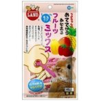 HAND FEEDING FRUITS MIX FOR SMALL ANMALS 45g MR681