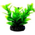 AQUATIC PLANTS SMALL - 6 NAP335