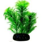 AQUATIC PLANTS MEDIUM - 3 NAP362
