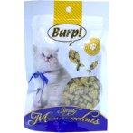 CAT BISCUITS - CATNIP FLAVOR 50g BWFWC20631