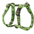 DRESS BEACHBUM HARNESS- LIME JUICE (LARGE) RG0SJ03CF