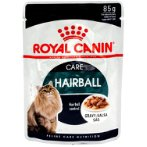 HAIRBALL CARE IN POUCH 85g RC00041