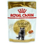 BRITISH SHORTHAIR ADULT (IN POUCH) 85g RC00125