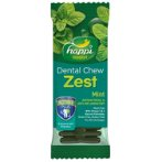 DENTAL CHEW ZEST MINT 4 INCH HPD122