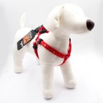 HARNESS - REFLECTIVE STAR (RED) (SMALL) BWDH1834RDS