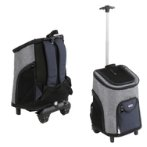 2IN1 BACKPACK WITH TROLLEY(33x30x50cm) (GREY/BLUE) SUN0DLC1302A