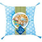 COOL CAT CUSHION CT452