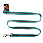 REFLECTIVE LEASH (TURQUOISE) (LARGE) BWNDL0220TQL