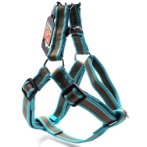 REFLECTIVE HARNESS (TURQUOISE) (LARGE) BWNDH0220TQL