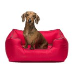 LOUNGER SOFA BED (RED) (LARGE) DGS0KLB3206