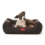 LOUNGER SOFA BED (BLACK) (SMALL) DGS0KLB2219