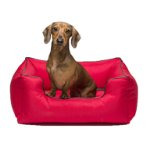 LOUNGER SOFA BED (RED) (SMALL) DGS0KLB2206