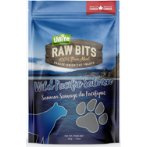 FREEZE DRIED RAW BITS WILD PACIFIC SALMON 80g CNT0UB00027