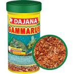 GAMMARUS 10g (100ml) DJN0DP201A