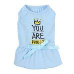 DRESS - YOU ARE PRINCESS (BLUE) (SMALL) (25cm) SS0DR107BUS